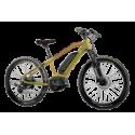 E-Bike Kids